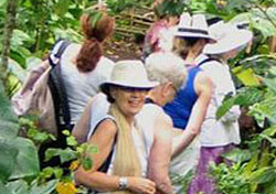 debbie-jungle-womens-group-tours390px.jpg